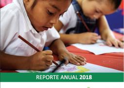 Reporte anual SFP 18